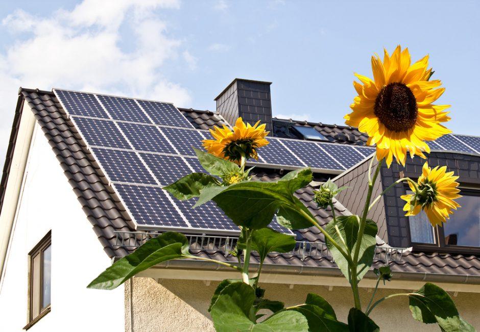 Žmonės patys rinksis elektros paslaugų tiekėją
